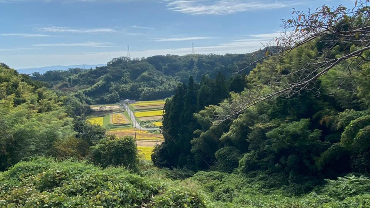 梅の木峠(TOJ京都コース内)